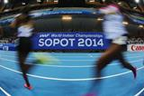 The 2014 IAAF World Indoor Championships in Sopot (Getty Images)
