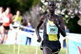 Kiprono Menjo from Kenya on his way to victory in the Almond Blossom Cross Country (LOC)